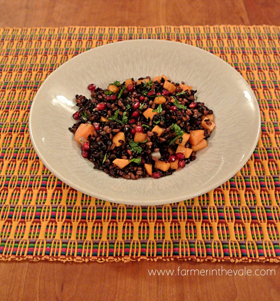 farro_rice_persimmon_pomegranate_salad
