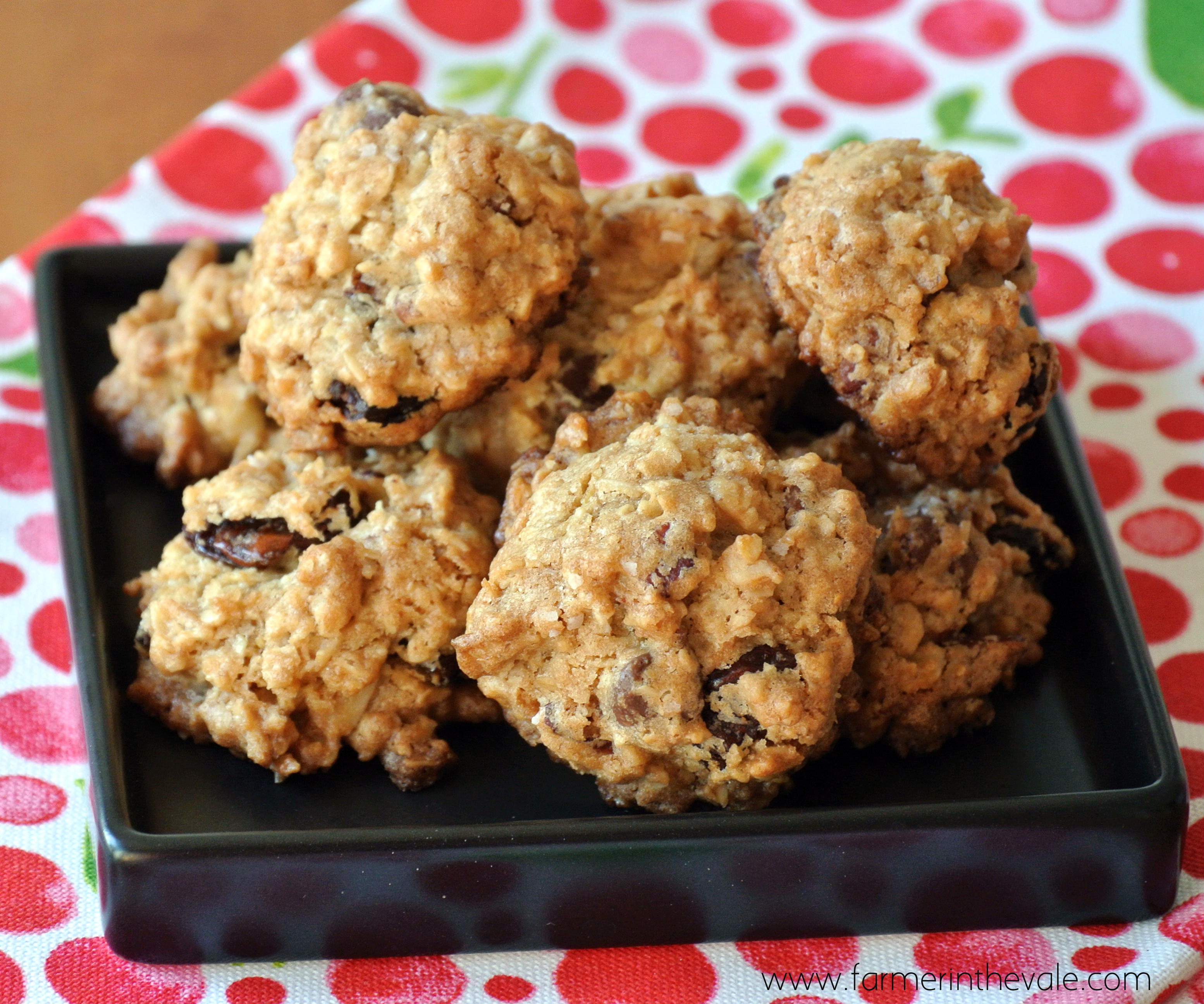 Countdown to Christmas – Crunchy Oatmeal Chip Cookies with Dried ...